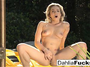Solo fucktoy playtime With Dahlia Sky